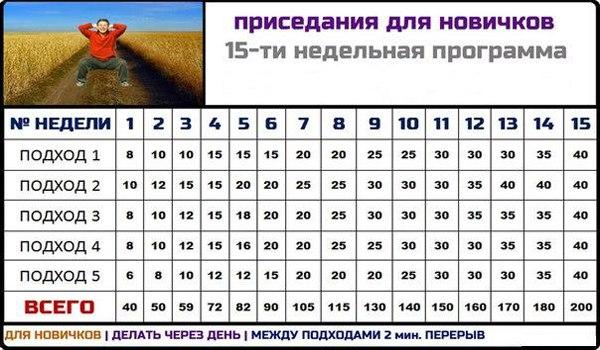 Трехдневная Программа Тренировок Для Новичков
