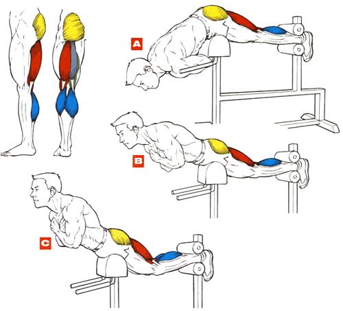 Гиперэкстензия для мышц бедра